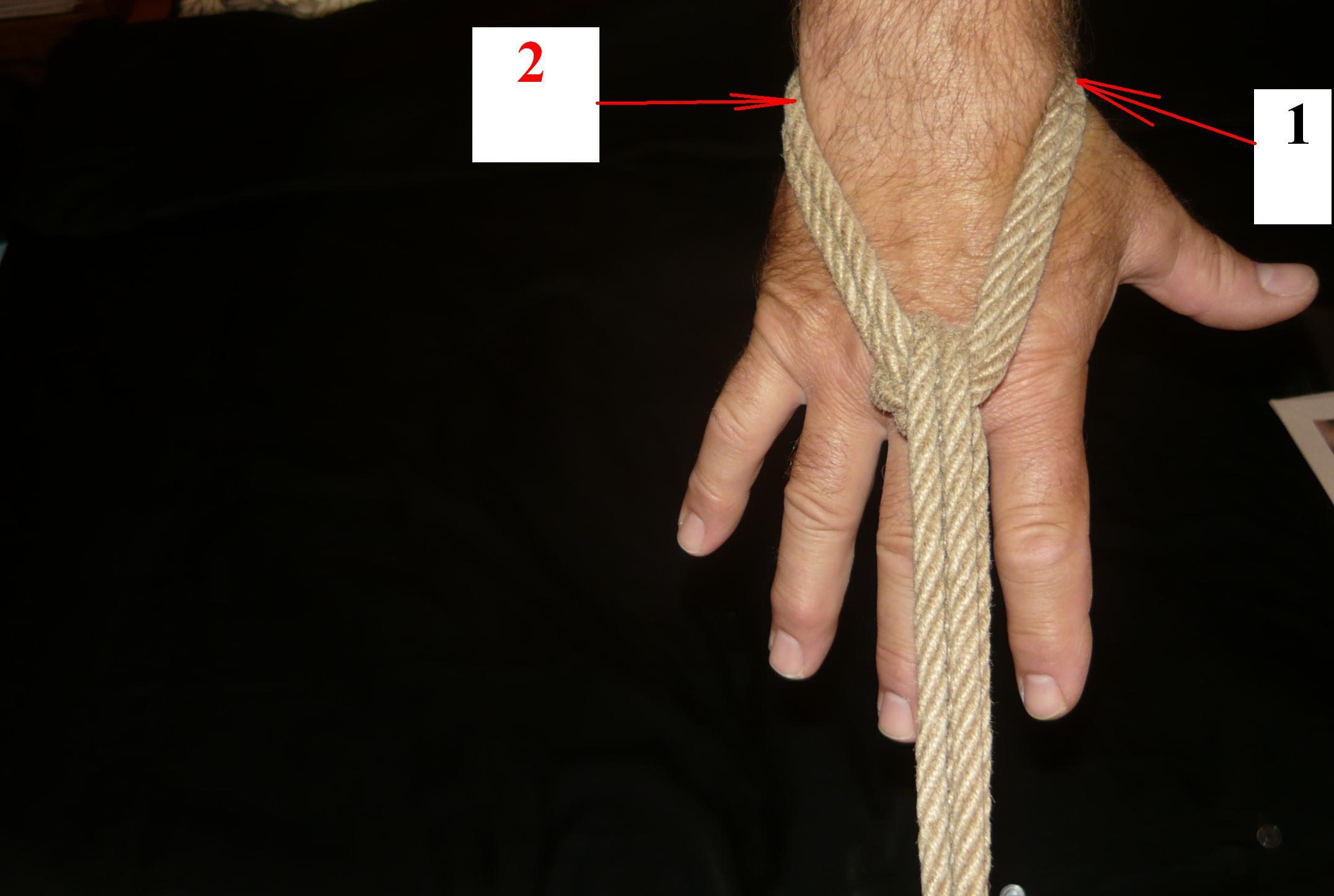 6.3 lina na dłoni z góry